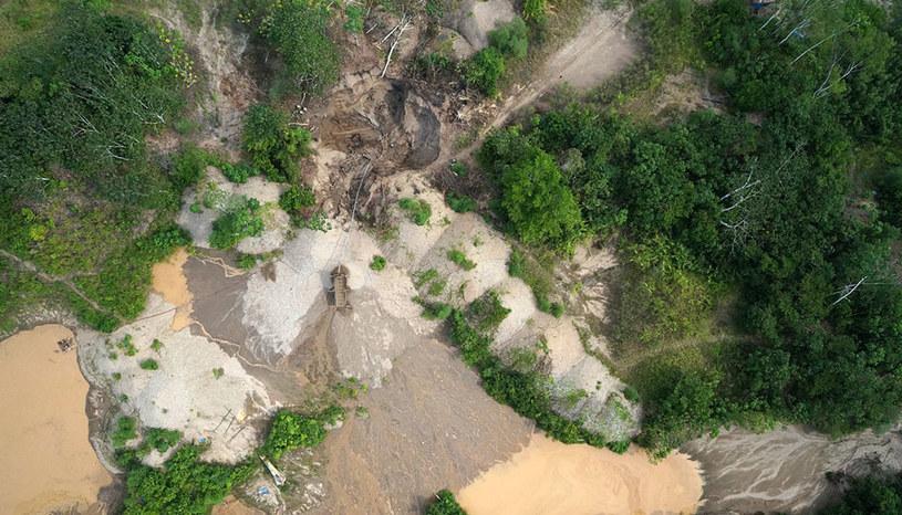 Tak wygląda Amazonia z perspektywy drona (Fot. Max Messinger/Wake Forest University) /materiały prasowe