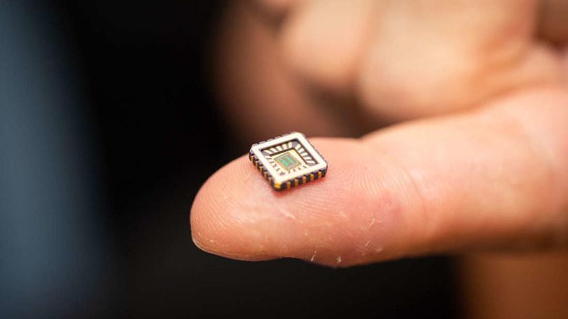 Tak wygląda bioniczny neuron /Fot. Uniwersytet w Bath /materiały prasowe