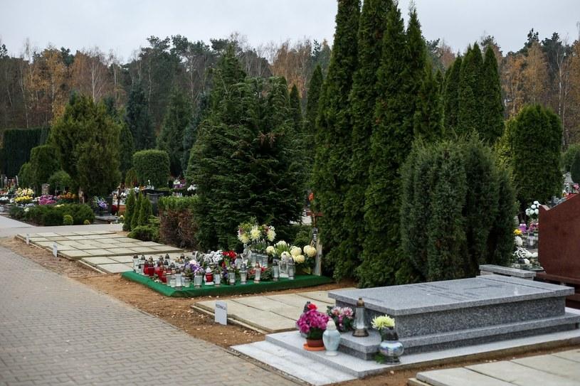 Tak wygląda grób Bohdana Smolenia /Przemysław Szyszka/SE /East News