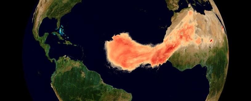 Tak wygląda pył znad Sahary przemierzający ocean /materiały prasowe
