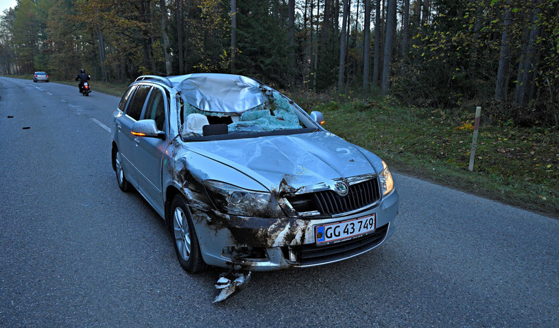 Tak wygląda samochód po zderzeniu z łosiem. Uszkodzenia przodu są niewielkie, najbardziej cierpi kabina /Piotr Płaczkowski /Reporter