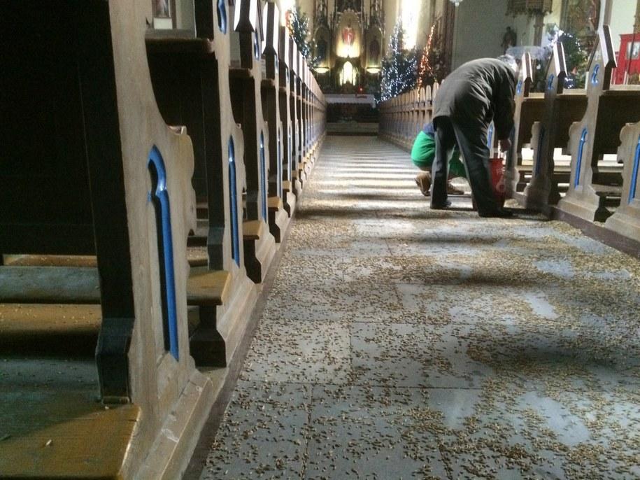 Tak wyglądał kościół po obrzuceniu proboszcza owsem /Bartek Paulus /RMF FM