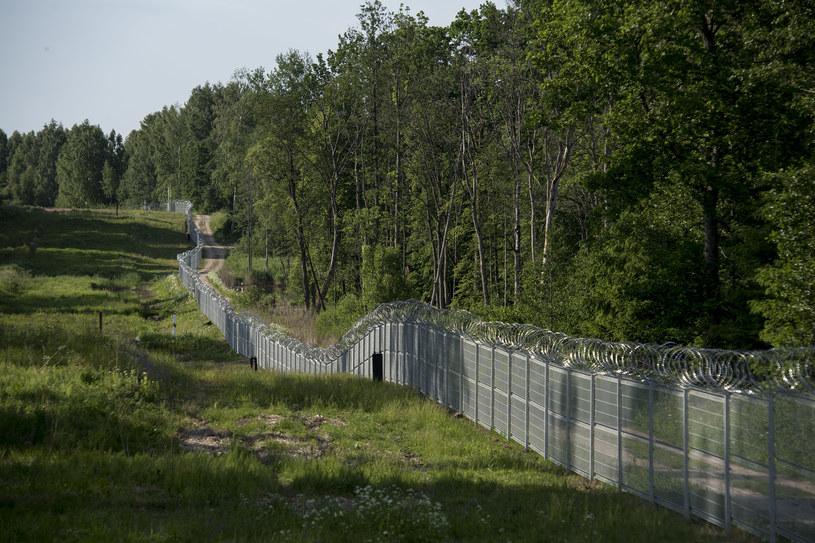 Tak zwana zielona granica Polski; okolice trójstyku granic Polski, Litwy i Rosji. / Agencja Wschod / /Agencja FORUM