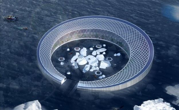 Taka farma miałaby produkować pokarm dla Grenlandii (Fot. Arctic Harvester) /materiały prasowe