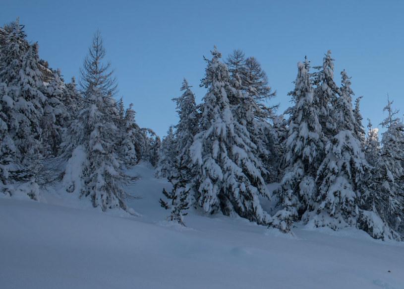 Taka zima tylko w górach /AFP