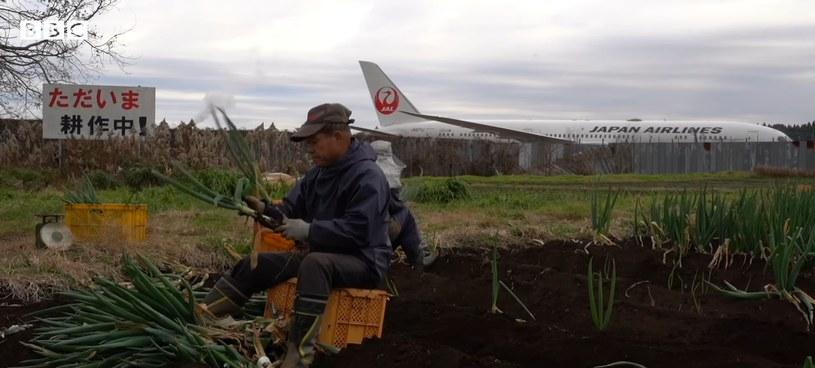 Takao w czasie codziennej pracy na gospodarstwie /YouTube