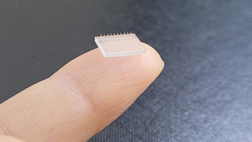 Taki plaster może pomóc w walce z COVID-19 /materiały prasowe