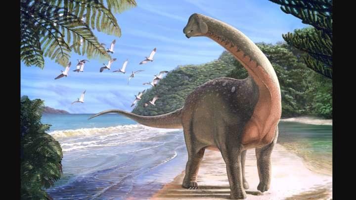 Takie dinozaury kiedyś żyły w Afryce /materiały prasowe