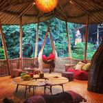 Takie domy z bambusa buduje się na Bali!