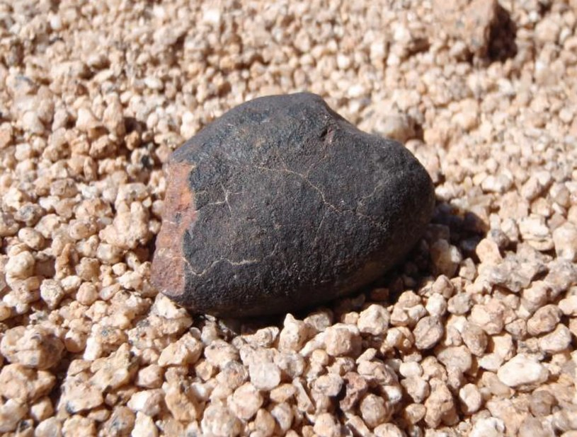 Takie meteoryty można znaleźć na pustyni Atakama /materiały prasowe