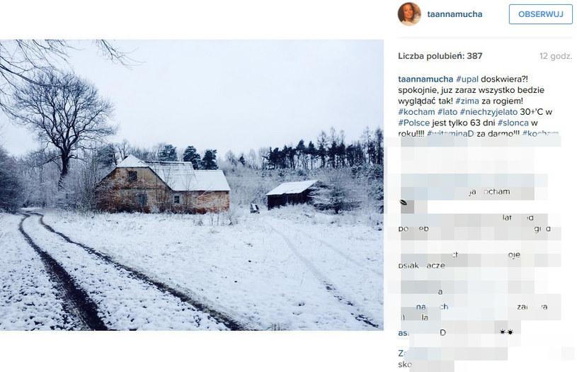 Takie zdjęcie opublikowała na Instagramie Anna Mucha /Instagram@taannamucha/printscreen /Instagram