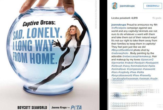 Takie zdjęcie opublikowała na Instagramie Joanna Krupa /Instagram@joannakrupa/printscreen /Instagram