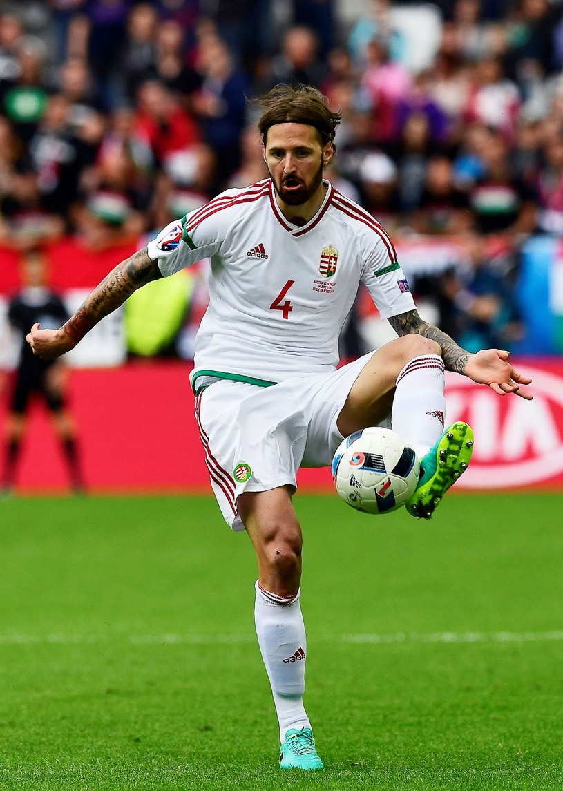 Tamas Kadar z dobrej strony pokazał się na Euro 2016 /AFP