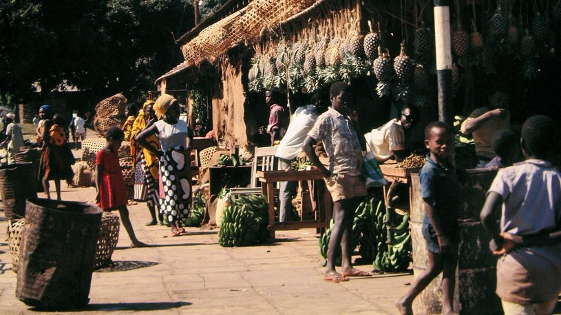 Tanganika to kontynentalna część Tanzanii i była kolonia brytyjska /East News