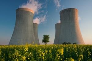 Tanio, taniej, atom? Ile kosztuje energia przyszłości