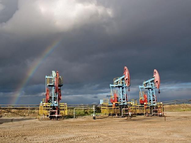 Tańsza ropa? Tak, ale jeszcze nie teraz /©123RF/PICSEL