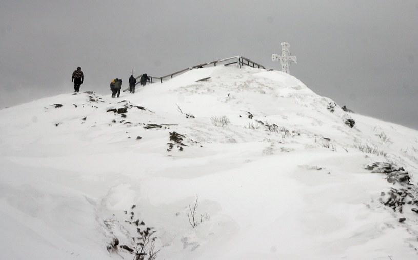 Tarnica /Wojciech Zatwarnicki /Reporter