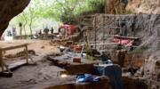Tarofalt: DNA sprzed 15 tys. lat, które zmienia bieg historii