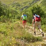 Tatry jeszcze dzikie? Wpływ człowieka zmienił krajobraz