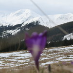 Tatry: Turysta spadł w rejonie Koziej Przełęczy Wyżniej
