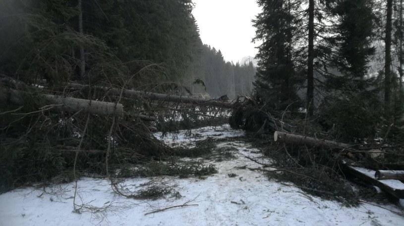 Tatrzański Park Narodowy informuje, że droga do Morskiego Oka jest niedrożna /Grzegorz Bryniarski /materiały prasowe