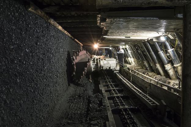 Tauron zaskoczony przerwaniem negocjacji ws. kopalni Brzeszcze /©123RF/PICSEL