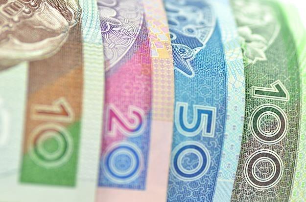 Te banknoty znają wszyscy Polacy... /©123RF/PICSEL
