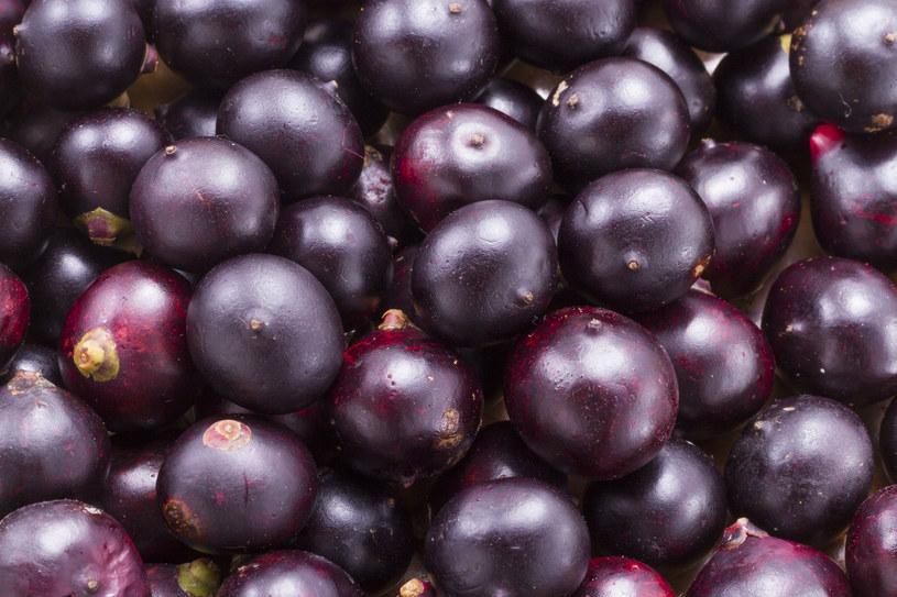 Te jagody są najskuteczniejszymi antyoksydantami! /123RF/PICSEL
