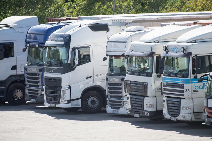 Te same ciężarówki w jednym kraju nadają się na złom, w innym wyjeżdżają z salonów... /Wojciech Stróżyk /Reporter
