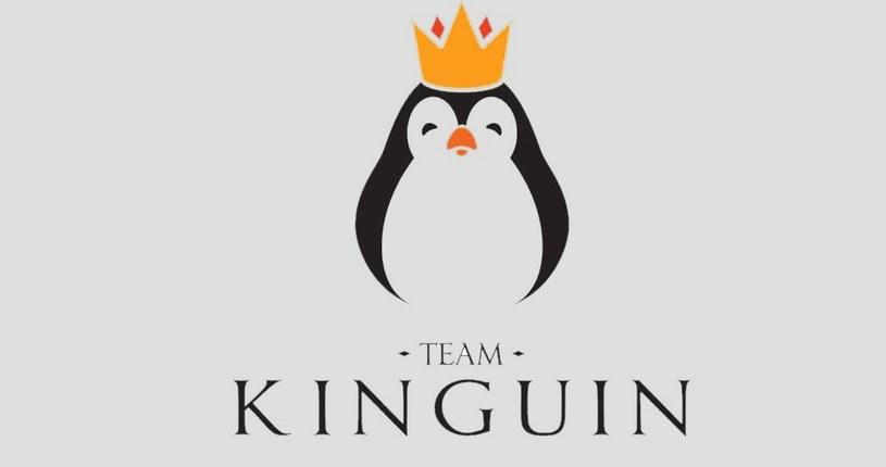 Team Kinguin - logo zespołu /materiały prasowe