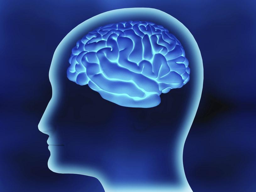 Technologia podejrzy myśli i zmieni wspomnienia? /© Glowimages