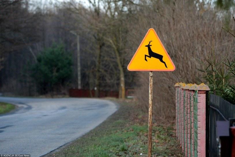 Tego znaku nie wolno lekceważyć. Zdjęcie ilustracyjne /Jakub Orzechowski  /Agencja SE/East News