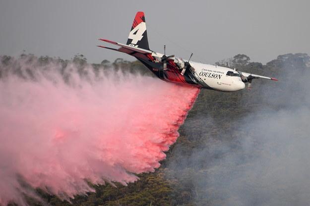 Tegoroczna fala pożarów w Australii przynosi tragiczne żniwo /Dan Himbrechts /PAP/EPA