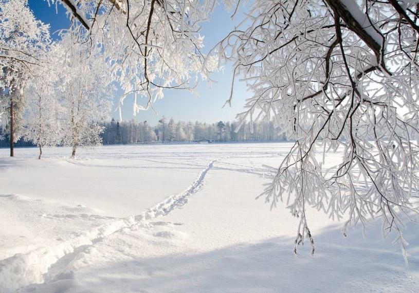 Tegoroczna zima w Polsce ma być wyjątkowo mroźna /123RF/PICSEL