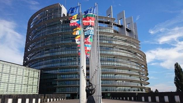 Tegoroczne wybory do europarlamentu odbędą się w państwach Unii Europejskiej w dniach 23-26 maja /Pixabay /