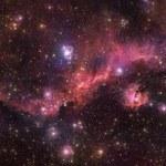 """Teleskop VST uchwycił """"niebiańską mewę"""" w locie"""