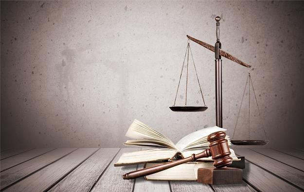 Temat nowej ustawy wciąż rozpala dyskusje specjalistów różnych dziedzin /©123RF/PICSEL