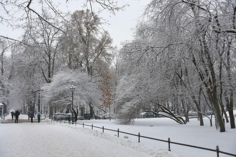 Temperatura minimalna w nocy będzie się wahać między - 12 stopni a -17 stopni /Albin Marciniak /East News