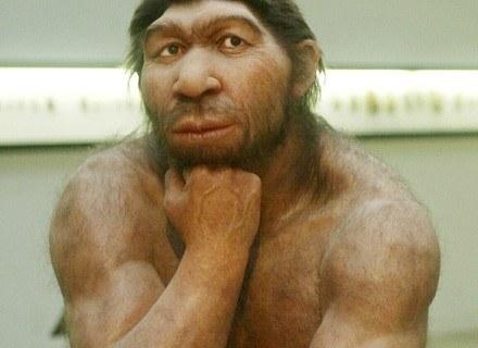 Ten neanderatalczyk myśli o swojej wyższości nad kobietami /AFP