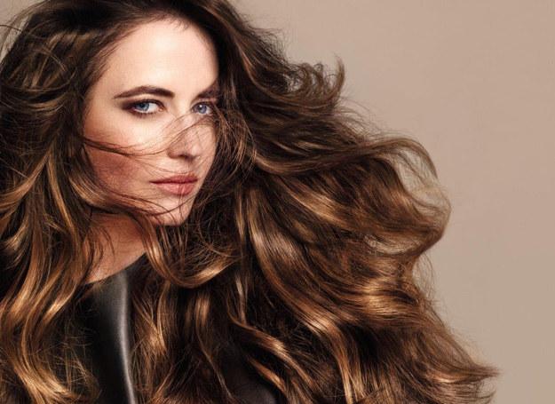 Ten trend nosi również tegoroczna Ambasadorka marki L`Oréal Professionnel Eva Green /materiały prasowe
