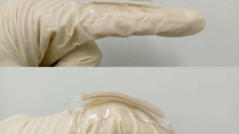 TENG wykorzystuje ruchy palców do wytwarzania prądu elektrycznego /materiały prasowe