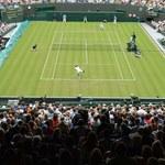 Tenis. Różne scenariusze przed przyszłorocznym Wimbledonem