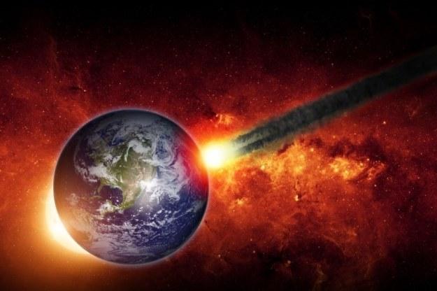 Teorii dot. powstania życia jest mnóstwo /123RF/PICSEL