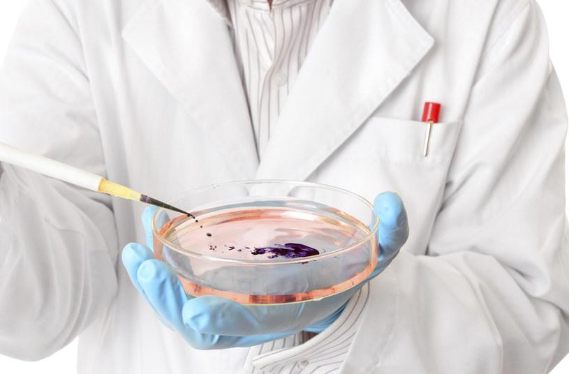 Terapia genowa może przydać się w walce z hemofilią /© Glowimages