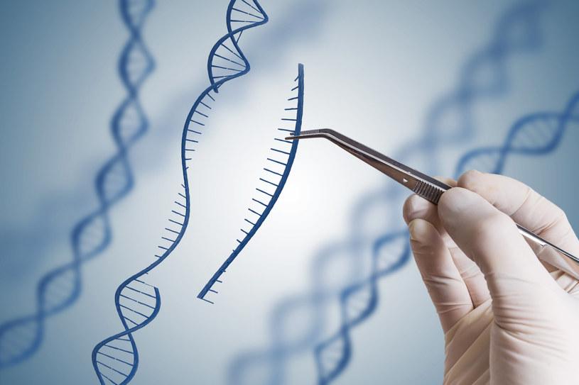 Terapie genowe mogą całkowicie odmienić medycynę /123RF/PICSEL