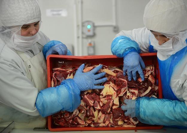 Teraz nie ma pewności czy mięso jest wołowe czy końskie... /AFP