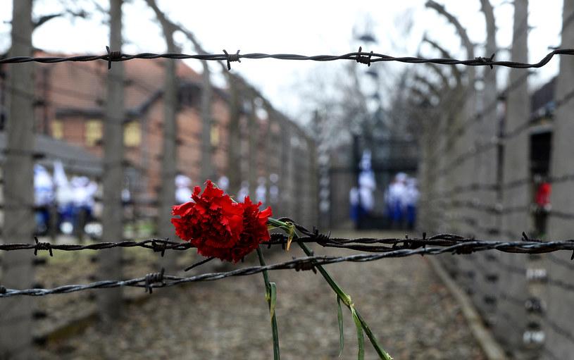 Teren byłego obozu Auschwitz /Janek Skarżyński /AFP