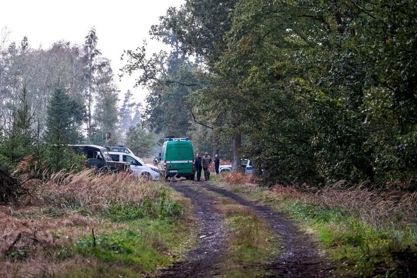 Teren, na którym doszło do eksplozji niewybuchu w kompleksie leśnym w pobliżu Kuźni Raciborskiej /Hanna Bardo /PAP