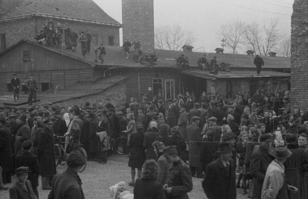 Teren obozu Auschwitz - Birkenau. Ludzie czekający na egzekucję Rudolfa Hoessa /Stanisław Dąbrowiecki, CAF /PAP