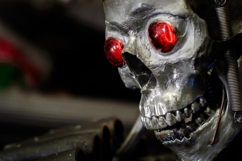 Terminatorzy nie zrobią krzywdy szefom Google'a /123RF/PICSEL